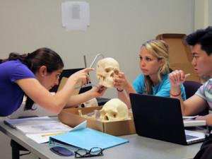study anthropology in Belarus